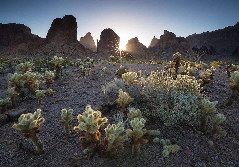 Sunrise, sunstar over the Kofa Mountains in southern Arizona