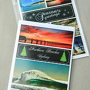 Seasons Greeting Sailfish Card