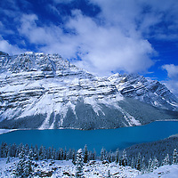 Peyto Lake with bule colored water from glaciers.