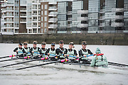Putney, London, Pre Boat Race Fixture, Cambridge University Women's Boat Club {CUWBC} v Oxford Brookes University over the River Thames, Championship Course Putney to Mortlake, Sunday 31/01/2016. [Mandatory Credit; Intersport-images]<br /> <br /> Cambridge on Surrey, Crew Bow Ashton Brown, 2 Zara Goozee, 3 Alice Jackson, 4 Fiona Macklin, 5 Hannah Roberts, 6 Thea Zabell, 7 Daphne Martschenko, Stroke Myriam Goudet, Cox Rosemary Ostfeld.<br /> <br /> Oxford Brookes on Middlesex, Crew Bow, Grace Macdonald, 2, Imogen Mackie, 3, Christie Duff, 4, Emily Herridge, 5, Jess Brown, 6, Danni Shrosbree, 7, Annie Withers, Stroke, Suzie Dear, Cox, Aisling Humphries.