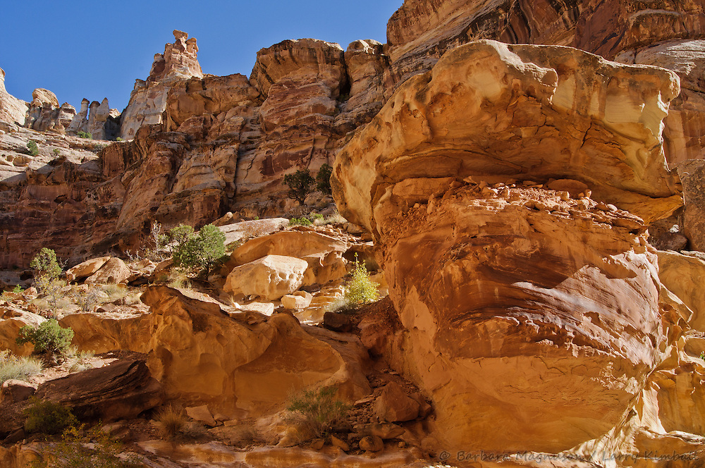 Crack Canyon; San Rafael Swell, Utah