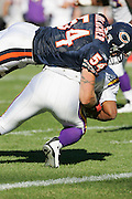 CHICAGO - OCTOBER 16:  Linebacker Brian Urlacher #54 of the Chicago Bears gets the second of two sacks on quarterback Daunte Culpepper #11 of the Minnesota Vikings at Soldier Field on October 16, 2005 in Chicago, Illinois. The Bears defeated the Vikings 28-3. ©Paul Anthony Spinelli *** Local Caption *** Brian Urlacher;Daunte Culpepper