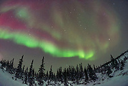 The Big and Little Dippers, and Polaris over the boreal forest amid subtly coloured aurora at the Churchill Northern Studies Centre. Taken on Feb 11, 2018 on a night with a decent display of Northern Lights. Arcturus is at right. Cassiopeia is at left.