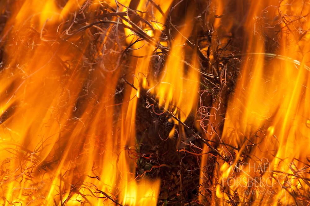 Flint Hills, prairie burn