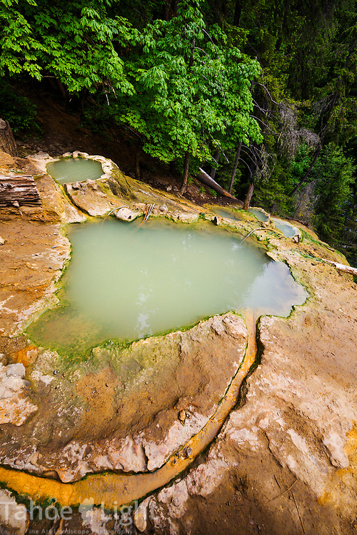 Umpqua hot springs in the mountains above Toketee Falls in Souther Oregon has a spectacular display of basalt rock at its base
