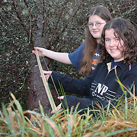 20/12/2005<br />Lisdoonvarna Community School students Noreen Lynch and Aisling Clancy, working on their Young Scientist of The Year Project, 'Windblow-Possible Causes'<br />Picture. Cathal Noonan/Press22.