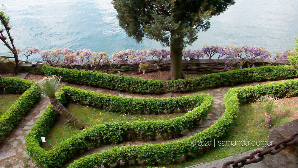 Wisteria and hedges of myrtle in the Villa Monastero gardens at Lake Como, Italy.