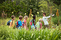 Children on Nature Field Trip