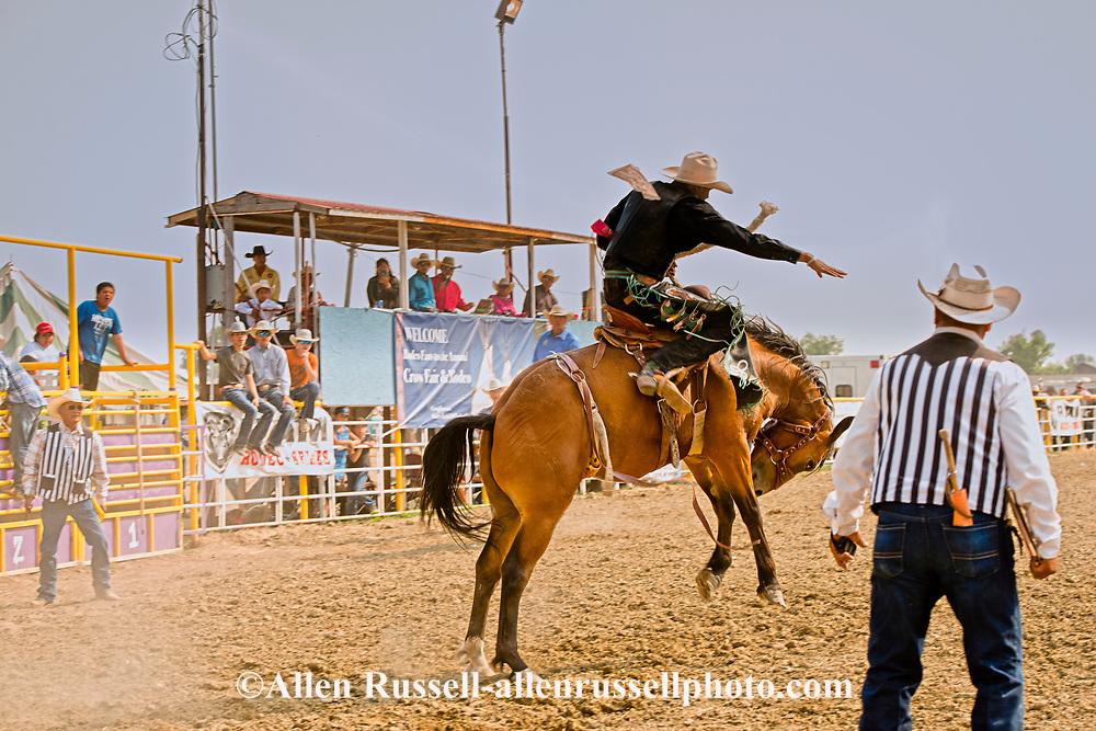 Saddle Bronc, Crow Fair Rodeo, Crow Indian Reservation, Montana, Josiah Running Crow riding Apache Jack