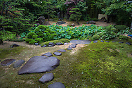 Genchuji Temple in Tottori is graced with a small but beautiful pond garden behind the temple.  Genchuji is also the burial site of Araki Mataemon, a swordsman of legend. Rakan  are painted on the fusuma screen doors inside the temple by Keitaro Takagi.