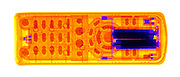 An X-ray of a TV remote control.  The IR control LED is at the left, while the batteries are at the  right in this image