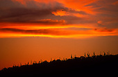 00746_Reddington_Pass_orange_sunset_AZ
