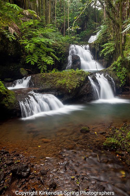 HI00326-00...HAWAI'I - Waterfall in the Hawaii Tropical Botanical Garden near Hilo on the Island of Hawai'i.
