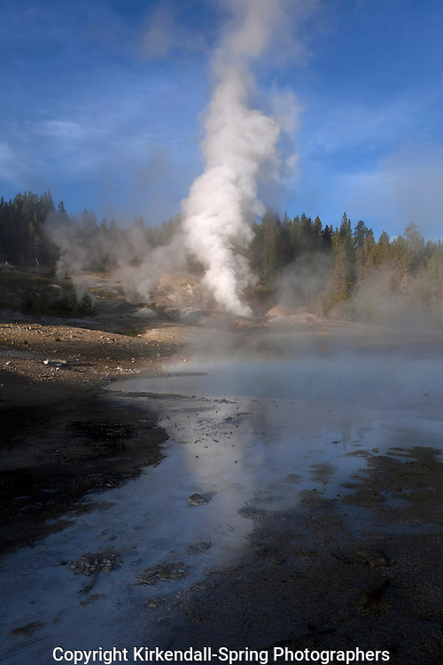 WY00545-00...WYOMING - Norris Geyser Basin in Yellowstone National Park