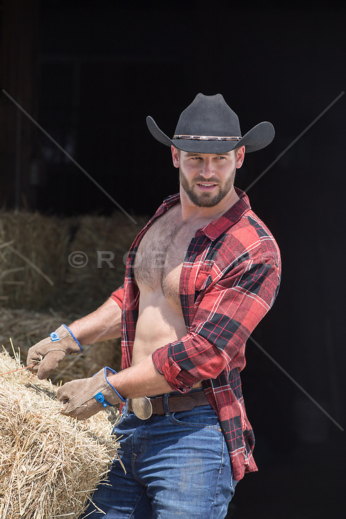 hot cowboy with open shirt moving hay bales by a barn