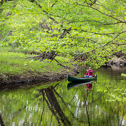 A man canoeing in spring on the Lamprey River in Epping, New Hampshire.