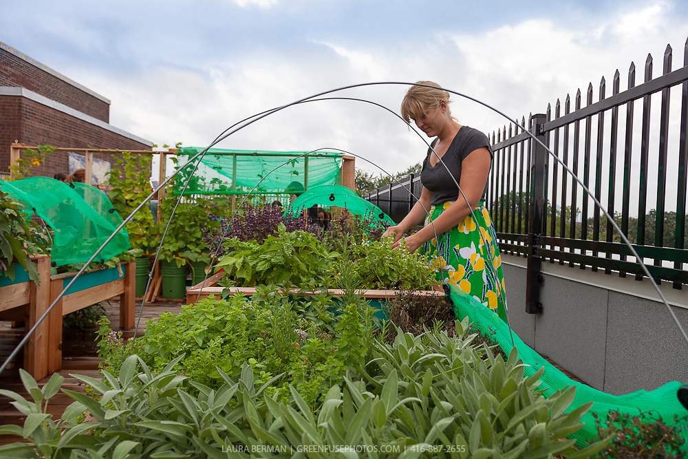 Brooke Ziebell  in the rooftop garden at Broock School
