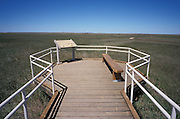 Wooden walkway to view and study prairie grass in the Badlands