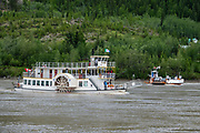 Built from 1998-2001, the Klondike Spirit paddlewheeler has offered narrated cruises on the Yukon River since 2007 from Dawson City (www.klondikespirit.com), in Yukon, Canada. In Yukon, the free George Black Ferry (at right in background of photo) connects Dawson City to West Dawson and the Top of the World Highway, which goes to the Yukon-Alaska border. It is a drive-on/drive-off single deck ferry, operating 24 hours per day in summer. The remote 65-mile Top of the World Highway connects the Klondike Loop from Dawson City with the Taylor Highway (which links Chicken, Eagle and the Alaska Highway). Dawson City was the center of the Klondike Gold Rush (1896–99), after which population rapidly declined. Dawson City shrank further during World War II after the Alaska Highway bypassed it 300 miles (480 km) to the south using Whitehorse as a hub. In 1953, Whitehorse replaced Dawson City as Yukon Territory's capital. Dawson City's population dropped to 600–900 through the 1960s-1970s, but later increased as high gold prices made modern placer mining operations profitable and tourism was promoted. In Yukon, the Klondike Highway is marked as Yukon Highway 2 to Dawson City.