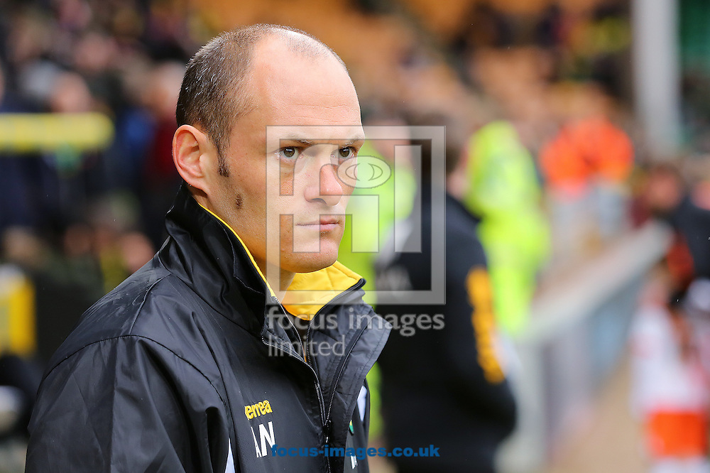 Manager of Norwich City, Alex Neil watches on during the Sky Bet Championship match at Carrow Road, Norwich<br /> Picture by Richard Calver/Focus Images Ltd +447792 981244<br /> 07/02/2015