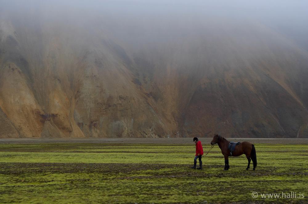 Hestamenn á leið til fjárreksturs í Landmannalaugum / Farmers riding horses to collect their sheeps in Landmannalaugar