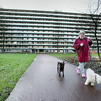 Nederland, Amsterdam , 27 november 2009..De flat Walmolenm in de Amsterdam Noord wijk Molenwijk..Foto:Jean-Pierre Jans