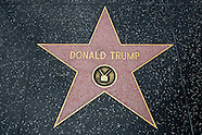 Donald Trump's star on the Hollywood Walk of Fame