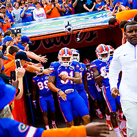 NCAA College Football: Florida Atlantic at Florida<br /> Game Action - FAU Owls at UF Gators<br /> Ben Hill Griffin Stadium/Gainesville, FL, USA<br /> 11/21/2015<br /> X160164 TK1<br /> Credit: Chip Litherland