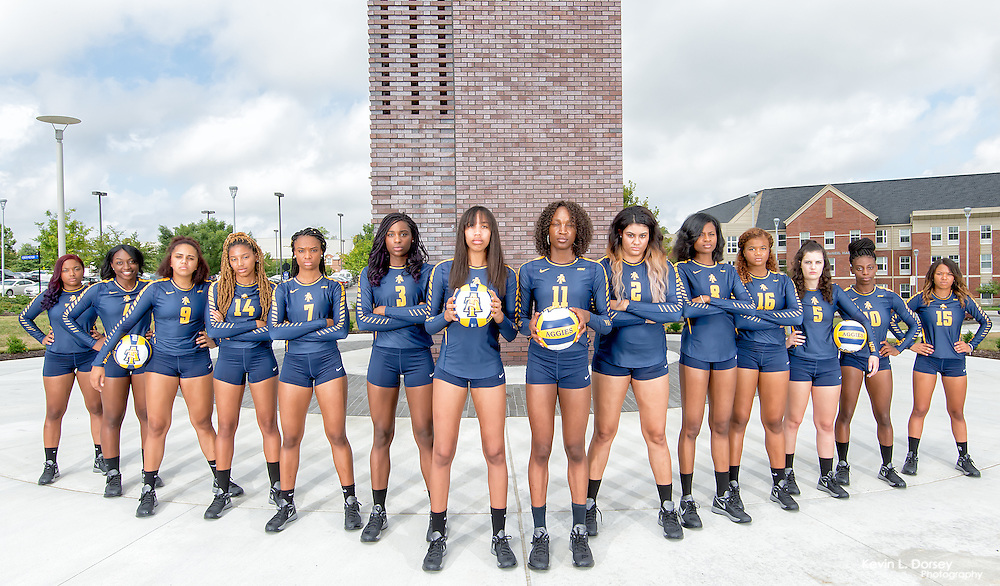 The 2016 Edition of the NC A&T Volleyball Team (Picture Day)