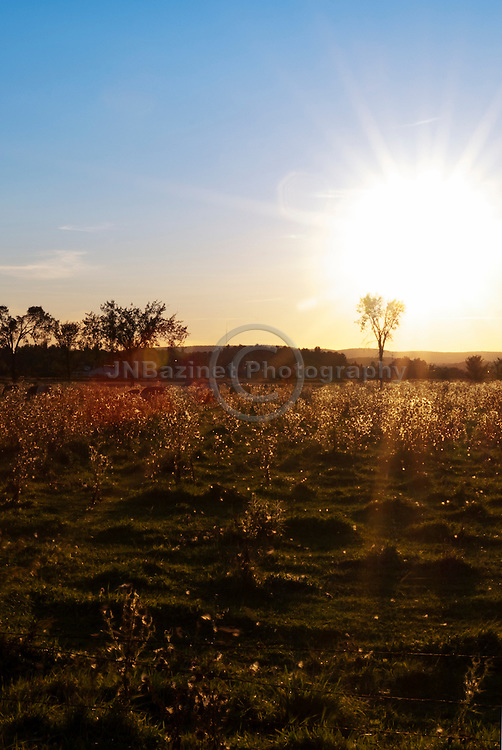 Sun sets behind large open field