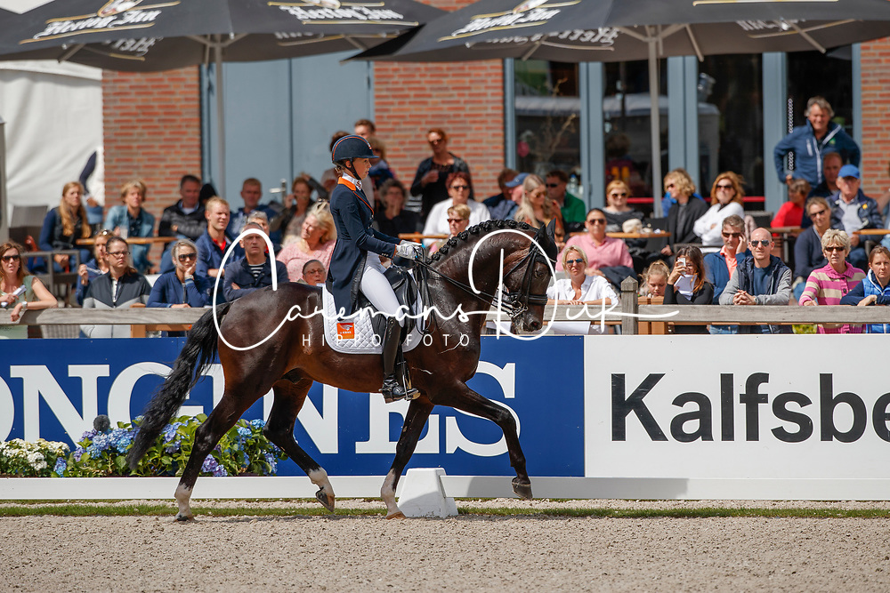 Brouwer Kirsten, NED, Ferdeaux<br /> Longines FEI/WBFSH World Breeding Dressage Championships for Young Horses - Ermelo 2017<br /> &copy; Hippo Foto - Dirk Caremans<br /> 03/08/2017