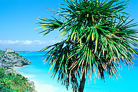 Mexique, etat du Quintana Roo, Tulum, site archeologique Maya de Tulum sur la mer des Caraibes, Plage de Tulum // Mexico, Tulum, archeological and ancient Maya site of Tulum, caribbean sea, Tulum beach