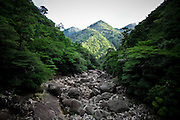 Japan, Yakushima - a dry rock's river in a middle of a valley.