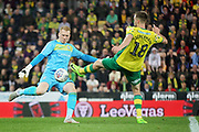 Norwich City midfielder Marco Stiepermann (18)  tries to charge down a Sheffield Wednesday goalkeeper Keiren Westwood (1) clearance during the EFL Sky Bet Championship match between Norwich City and Sheffield Wednesday at Carrow Road, Norwich, England on 19 April 2019.