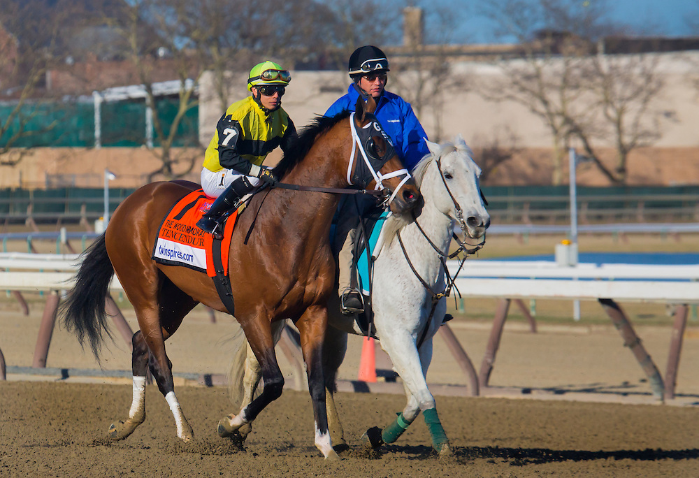 """(7) This is a Series of 11 photos, beginning with the post parade culminating with the stretch drive for the 2015 Wood Memorial. The race was won by """"Frosted"""", number 4, a grey horse with jockey Joel Rosario aboard in blue silks."""