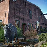 Buffalo Trace Gift Shop