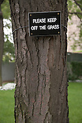 Please Keep of the Grass sign on a tree