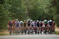 The lead group approach at Boels Ladies Tour 2019 - Stage 3, a 156.8 km road race starting and finishing in Nijverdal, Netherlands on September 6, 2019. Photo by Sean Robinson/velofocus.com