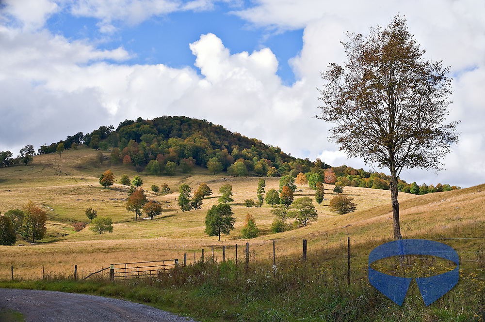 Late summer reveals early signs of fall along Dry Fork Road in rural Randolph County, West Virginia.