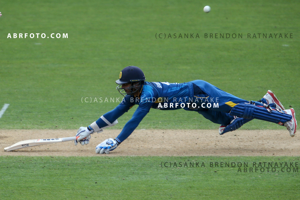 Kumar Sangakkara dives into his crease to avoid getting run out during the 2015 ICC Cricket World Cup Pool A group match between England Vs Sri Lanka at the Wellington Regional Stadium, Wellington, New Zealand.