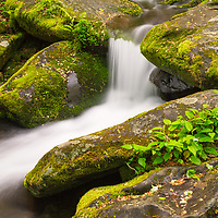 Roaring Fork water cascade. Great Smoky Mountains National Park, TN