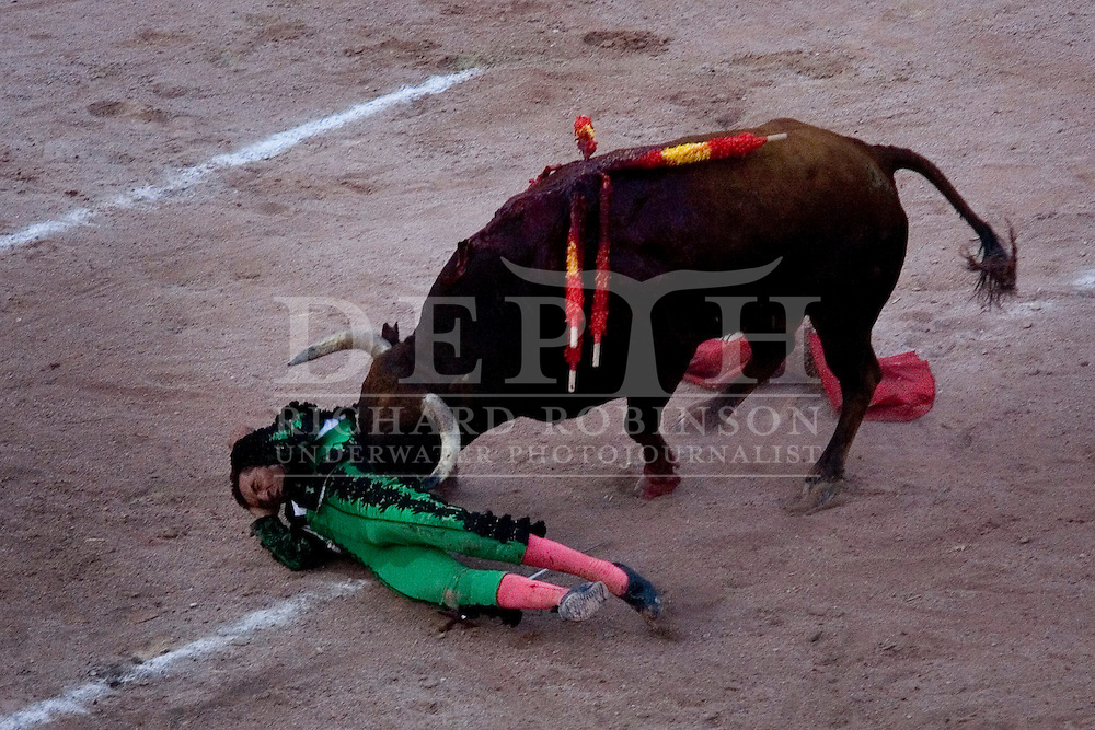 Europe : Bullfighting in the Roman Arena  at the Rice Festival in Arles,  Provence, France..Sunday 10 September 2006.Photograph Richard Robinson.