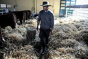 20180905/ Javier Calvelo - adhocFOTOS/ URUGUAY/ MONTEVIDEO/ Expo Prado 2018 es la 113&ordf; Exposici&oacute;n Internacional de Ganader&iacute;a y Muestra Internacional Agro Industrial y Comercial organizada por la Asociaci&oacute;n Rural del Uruguay, en el predio ubicado en el Prado de Montevideo.<br /> En la foto:  113&ordf; Exposici&oacute;n Internacional Expo Prado 2018 en el Prado de Montevideo. Foto: Javier Calvelo / adhocFOTOS