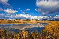 Swan Lake reflects clouds and Gallatin Mountain Range in Yellowstone National Park in Wyoming