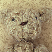 Head and chest of vintage teddy bear with looped beige fur against vintage beige paper with tiny flower motif