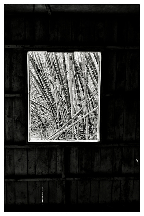 "An interior view from within an abandoned Monk's meditation hut set within a dense bamboo forest, in the grounds of the Pha Koeng Buddhist temple, Chaiyaphum Province, Northeast Thailand, 2014. From the series: Pha Koeng"" (2011-2017)."