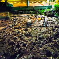 Aerial view of workers lighting the post holesin the  Royal Palm circle at the Tequesta archaeology site at the Met Square development in downtown Miami. Site managed by Archaeological and Historical Conservancy (AHC). in downtown Miami. Site managed by Archaeological and Historical Conservancy (AHC).