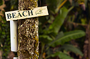 A sign points to the beach as all is well in Hilo while the Kilauea Volcano lower east rift zone continues the eruption on Wednesday, June 6, 2018, in Pahoa, Hawaii.