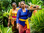 "08 AUGUST 2017 - UBUD, BALI, INDONESIA: Women walk through their family compound during a ceremony to honor a family temple in Ubud, Bali. Balinese Hindus have a 210 day calender and every almost every family compound on Bali has a family temple. Once a year (or every 210 days) families celebrate the ""birthday"" of their temple with a ceremony.     PHOTO BY JACK KURTZ"