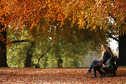 © Licensed to London News Pictures. 31/10/2016. Leeds, UK.  Two women sit on a park bench on a bright and colourful autumn day at Roundhay Park in Leeds, West Yorkshire. Photo credit : Ian Hinchliffe/LNP